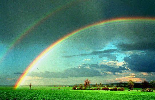 Poèmes au couleur de l'arc en ciel  Knd26g5l